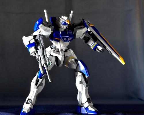 DSC 0426