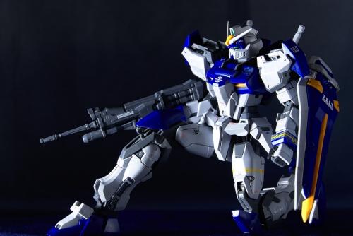 DSC 0431